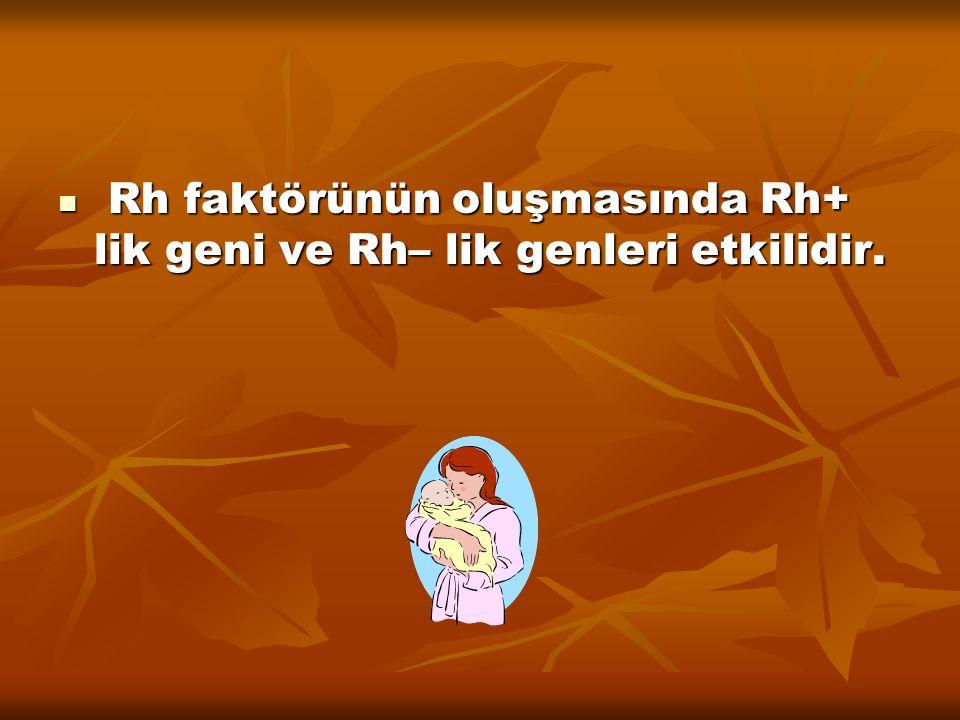 Rh faktörünün oluşmasında Rh+ lik geni ve Rh– lik genleri etkilidir.