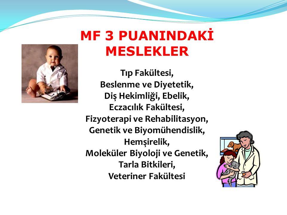 MF 3 PUANINDAKİ MESLEKLER