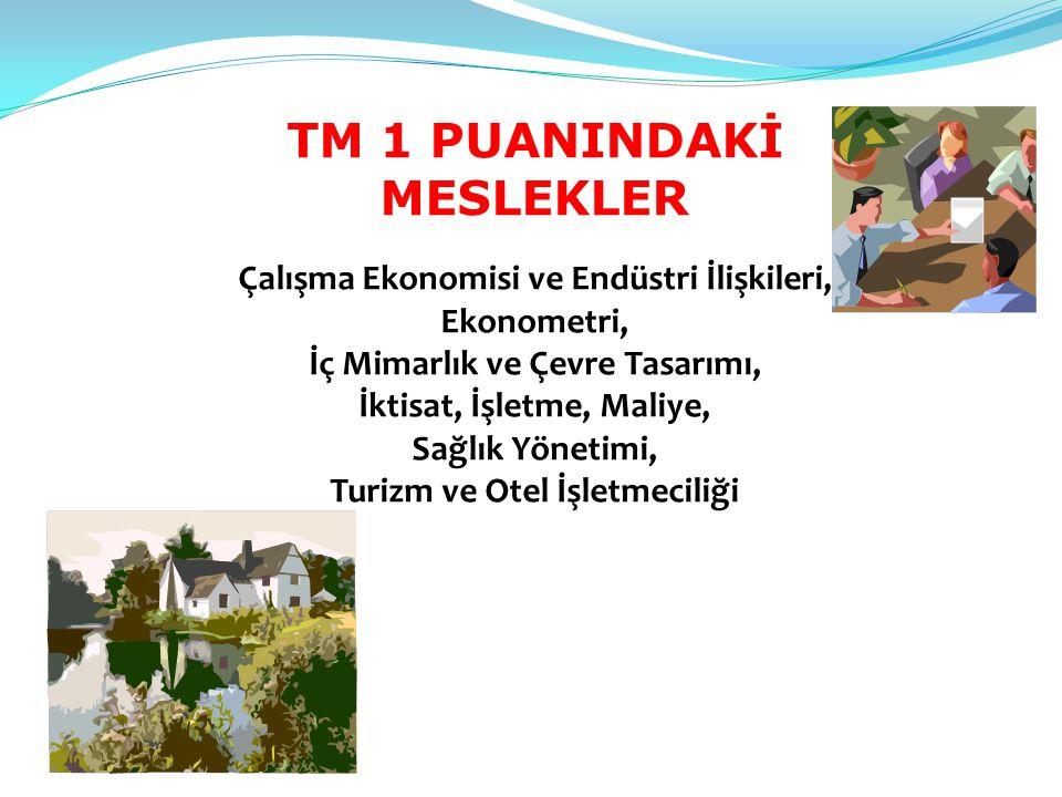 TM 1 PUANINDAKİ MESLEKLER