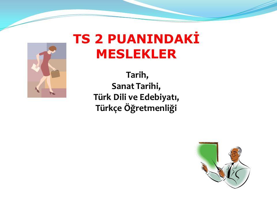 TS 2 PUANINDAKİ MESLEKLER