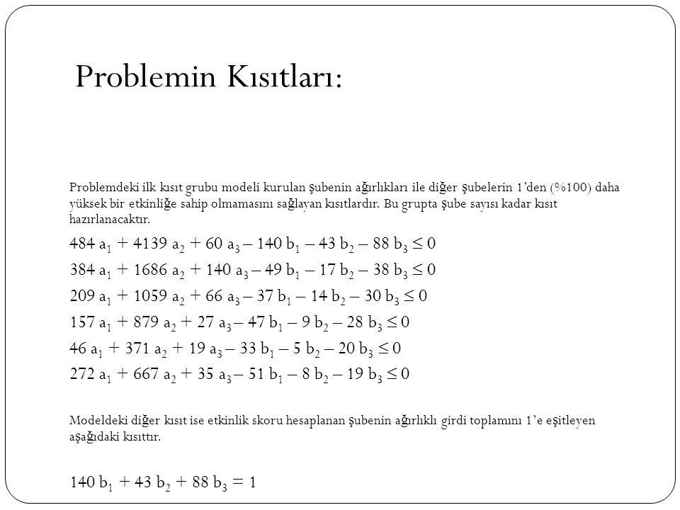 Problemin Kısıtları: