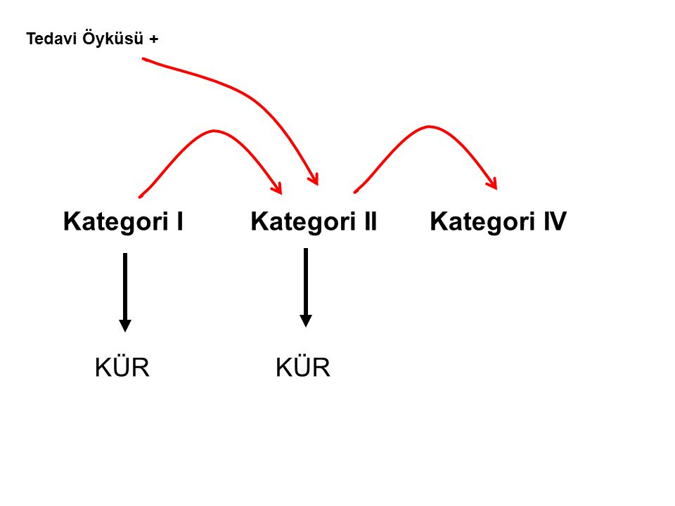 Tedavi Öyküsü + Kategori I Kategori II Kategori IV KÜR KÜR