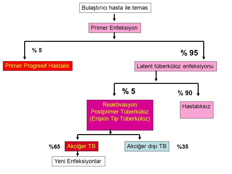 % 95 % 5 % 90 Bulaştırıcı hasta ile temas Primer Enfeksiyon % 5