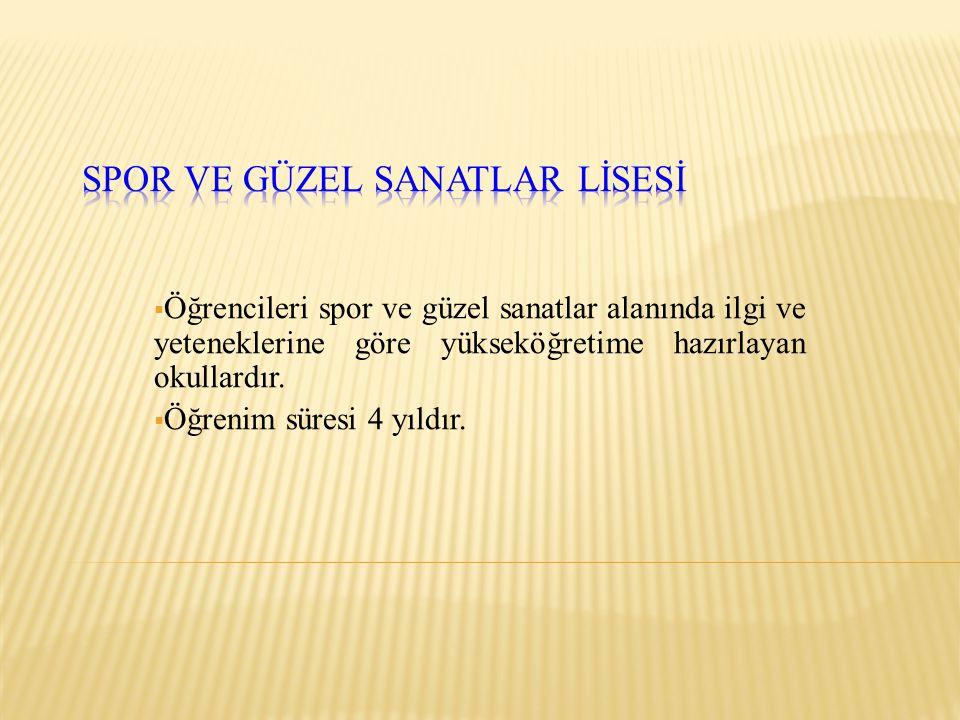 SPOR VE GÜZEL SANATLAR LİSESİ