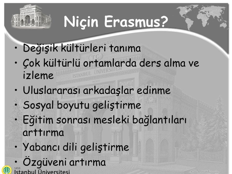 Niçin Erasmus Değişik kültürleri tanıma