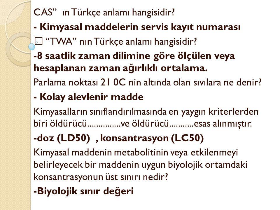 CAS ın Türkçe anlamı hangisidir