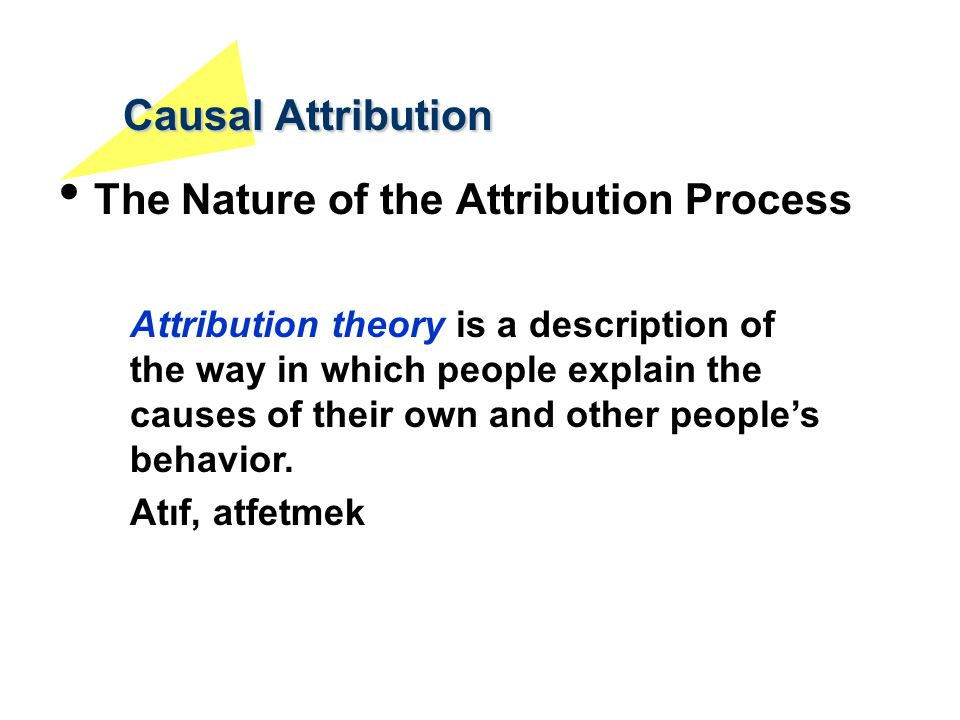 Causal Attribution The Nature of the Attribution Process