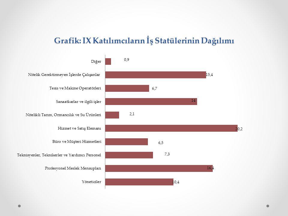 Grafik: IX Katılımcıların İş Statülerinin Dağılımı