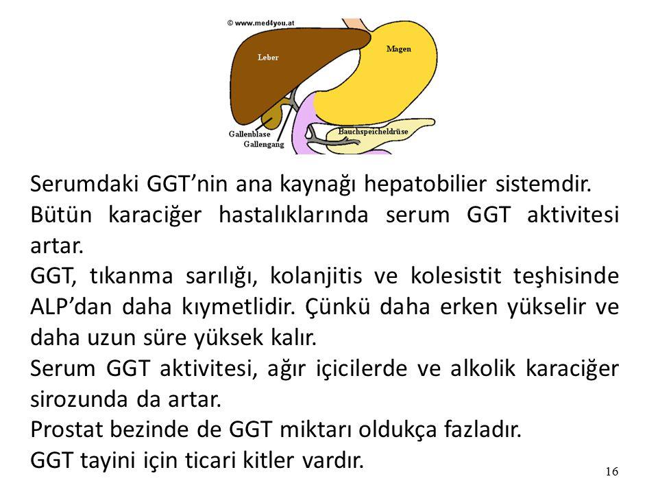 Serumdaki GGT'nin ana kaynağı hepatobilier sistemdir.