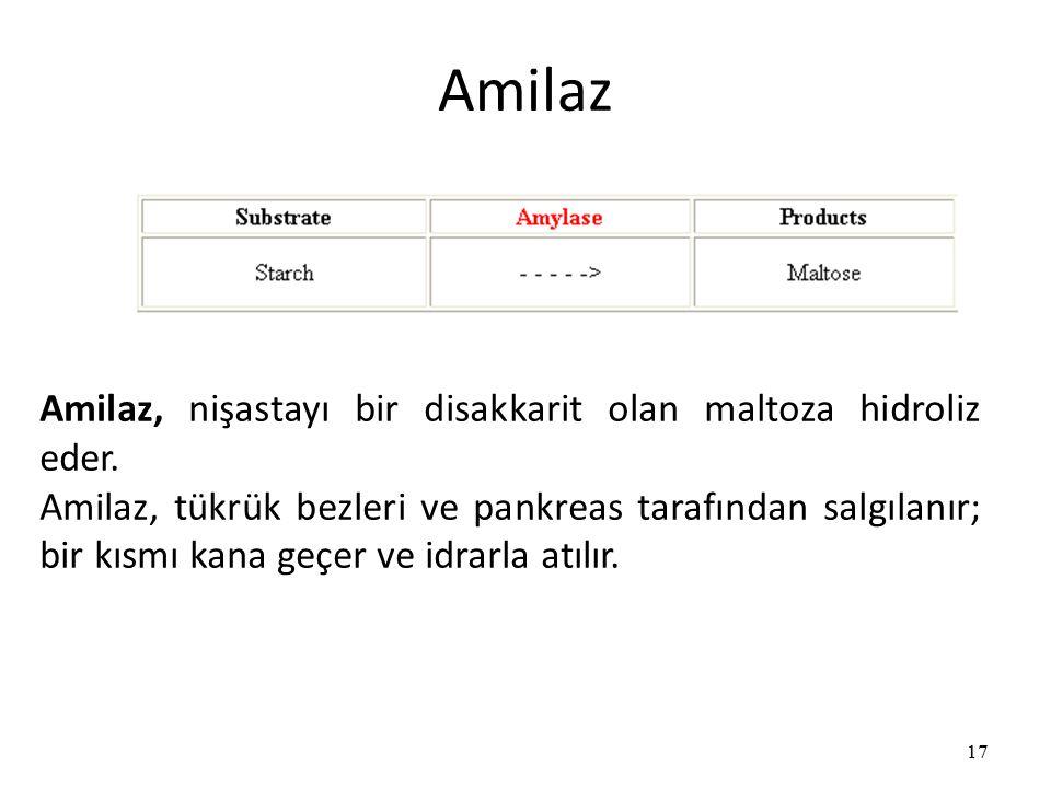 Amilaz Amilaz, nişastayı bir disakkarit olan maltoza hidroliz eder.