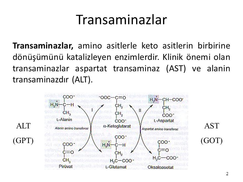 Transaminazlar