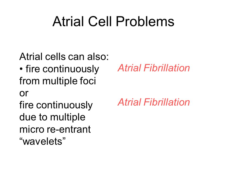 Atrial Cell Problems Atrial cells can also: Atrial Fibrillation