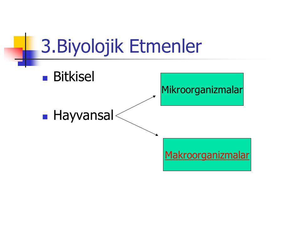 3.Biyolojik Etmenler Bitkisel Hayvansal Mikroorganizmalar