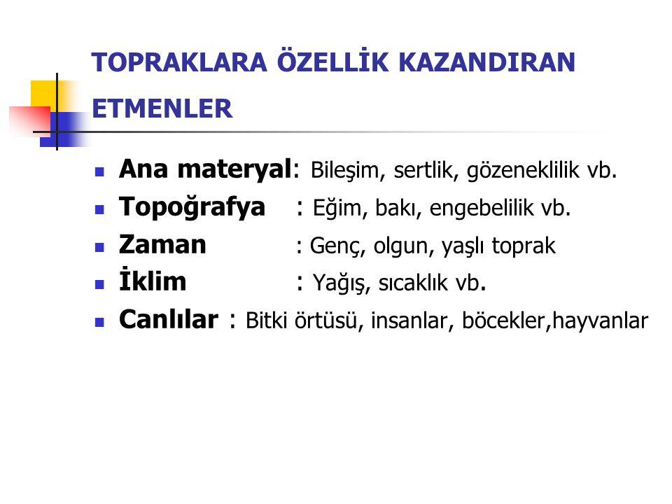 TOPRAKLARA ÖZELLİK KAZANDIRAN ETMENLER