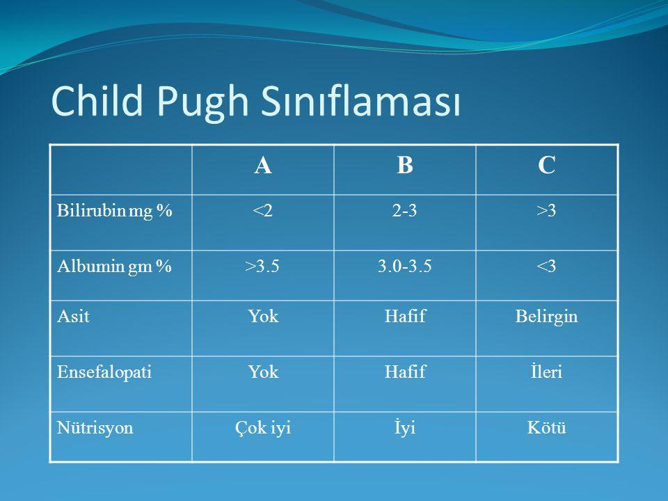 Child Pugh Sınıflaması