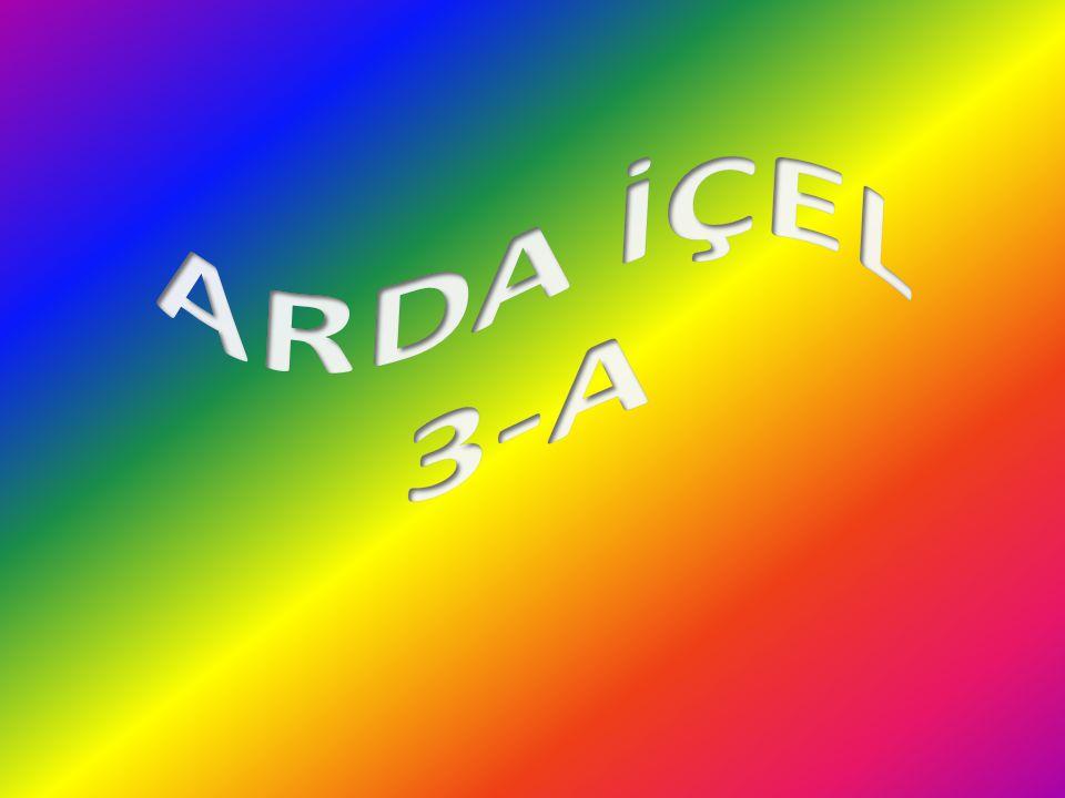 ARDA İÇEL 3-A