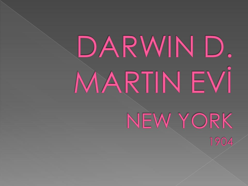 DARWIN D. MARTIN EVİ NEW YORK 1904