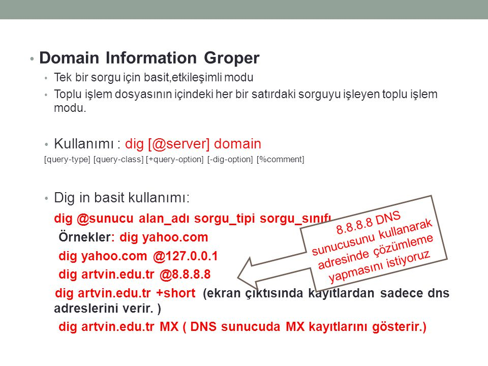 Domain Information Groper