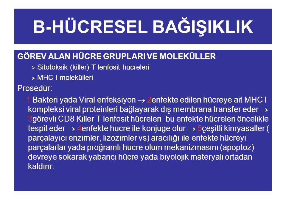 B-HÜCRESEL BAĞIŞIKLIK