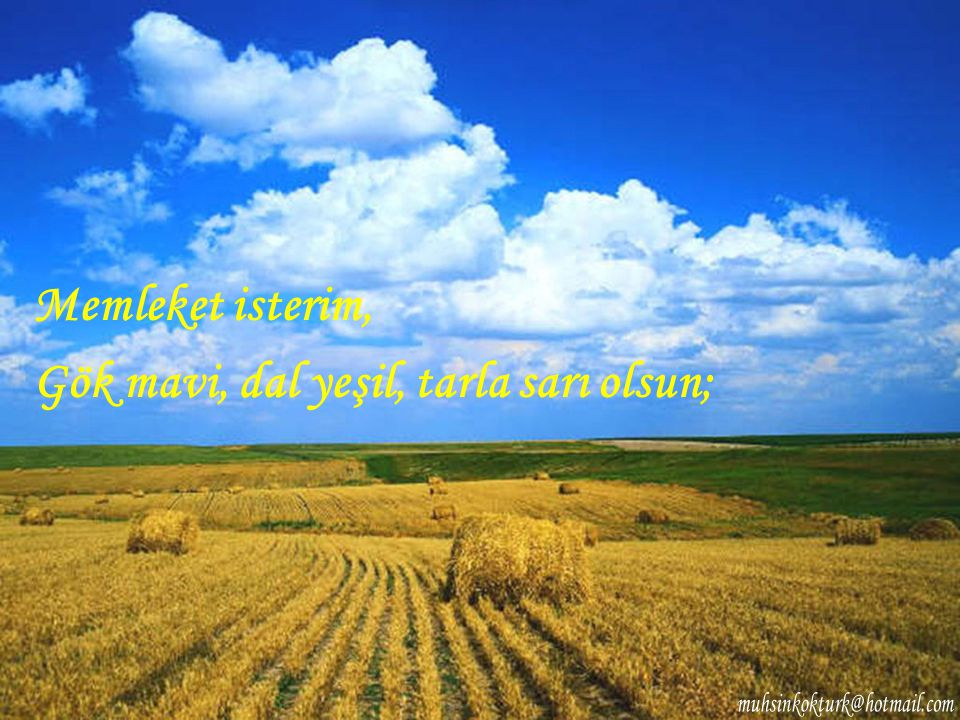 Gök mavi, dal yeşil, tarla sarı olsun;