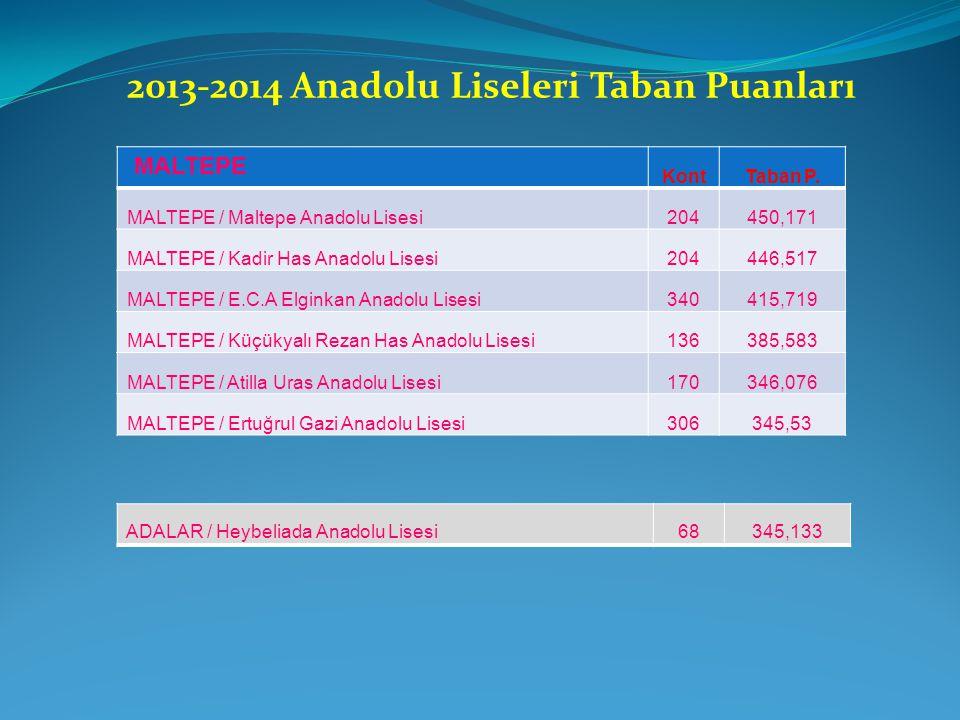 2013-2014 Anadolu Liseleri Taban Puanları