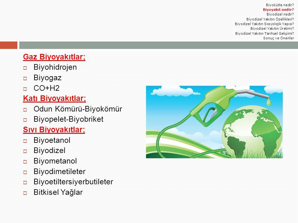 Odun Kömürü-Biyokömür Biyopelet-Biyobriket Sıvı Biyoyakıtlar;
