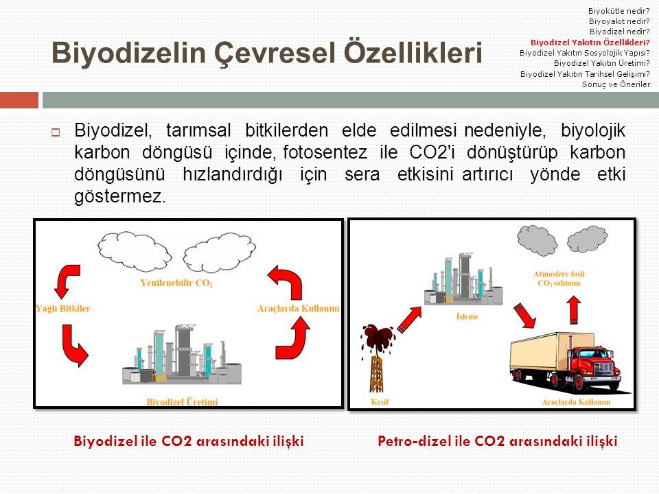 Biyodizelin Çevresel Özellikleri