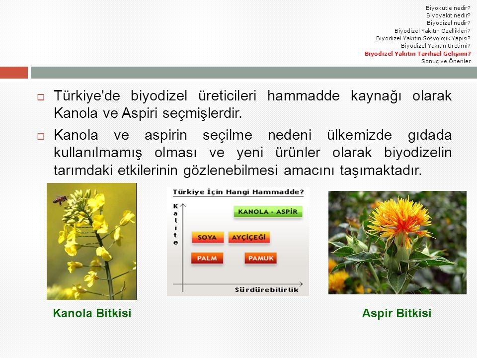Biyokütle nedir Biyoyakıt nedir Biyodizel nedir Biyodizel Yakıtın Özellikleri Biyodizel Yakıtın Sosyolojik Yapısı