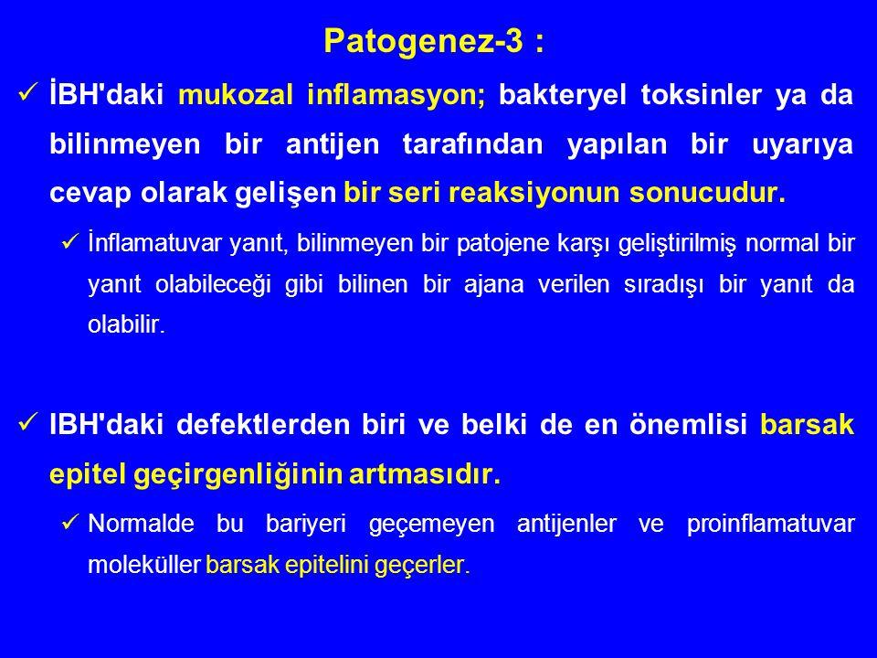 Patogenez-3 :