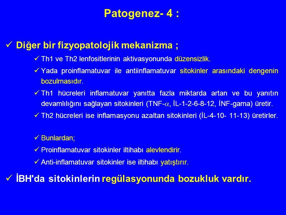 Patogenez- 4 : Diğer bir fizyopatolojik mekanizma ;