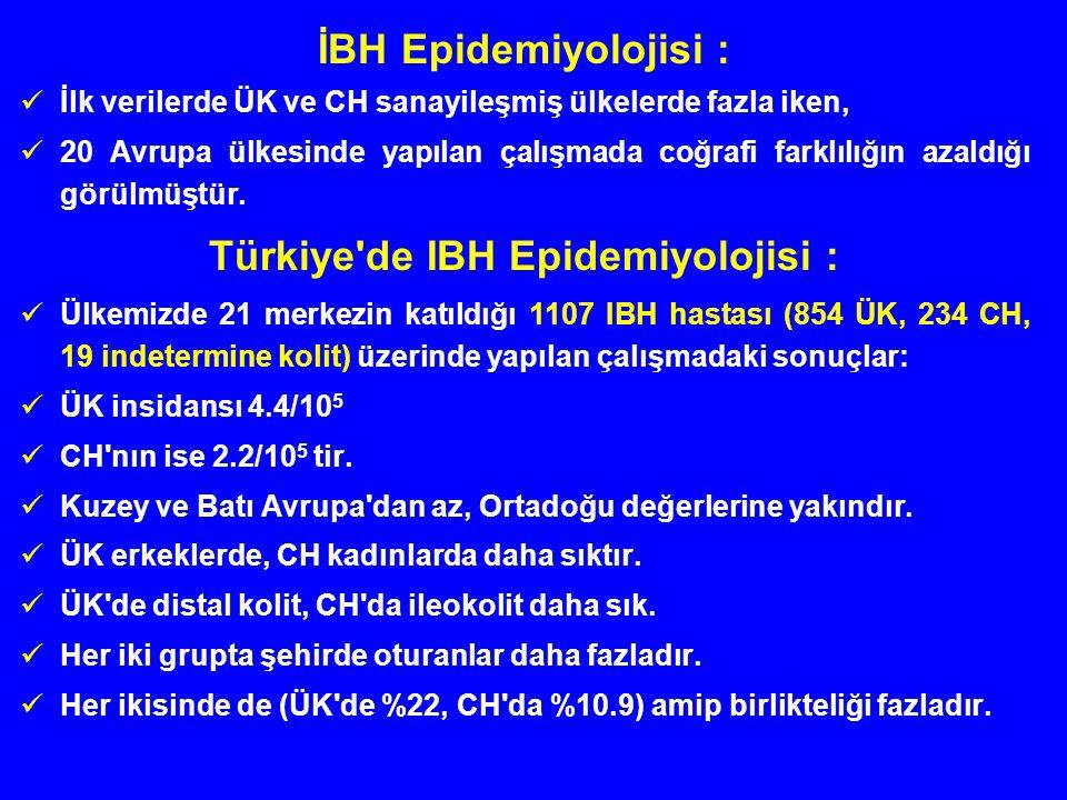 Türkiye de IBH Epidemiyolojisi :