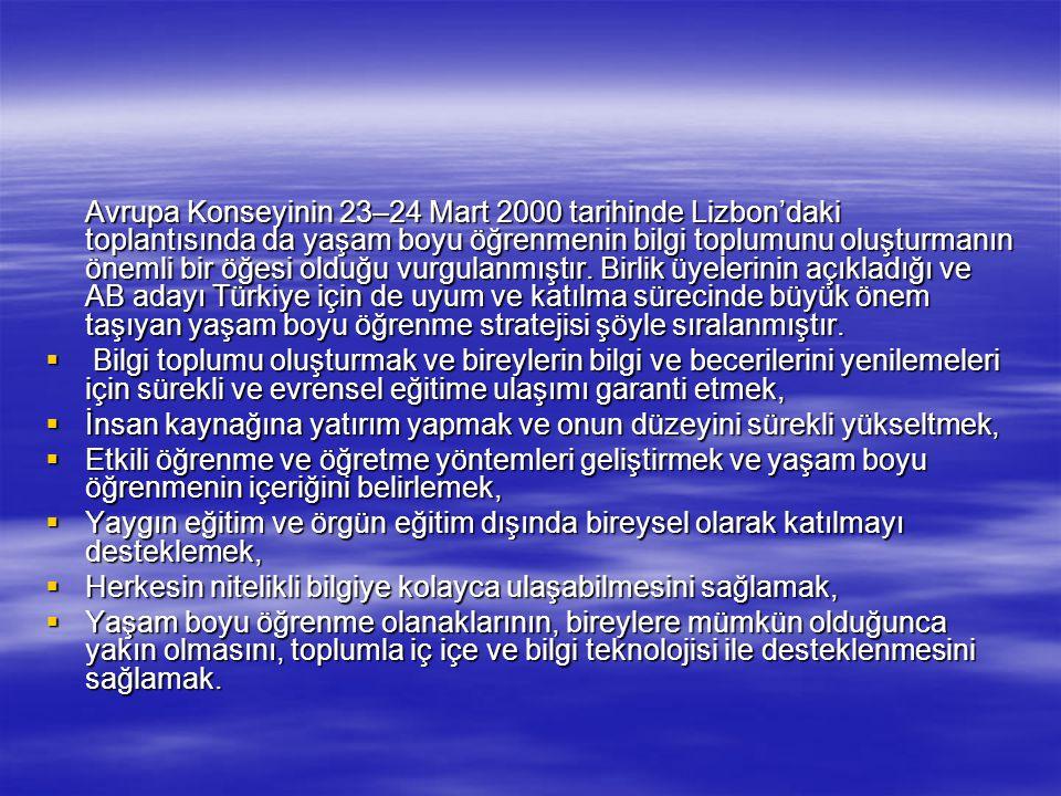 Avrupa Konseyinin 23–24 Mart 2000 tarihinde Lizbon'daki toplantısında da yaşam boyu öğrenmenin bilgi toplumunu oluşturmanın önemli bir öğesi olduğu vurgulanmıştır. Birlik üyelerinin açıkladığı ve AB adayı Türkiye için de uyum ve katılma sürecinde büyük önem taşıyan yaşam boyu öğrenme stratejisi şöyle sıralanmıştır.