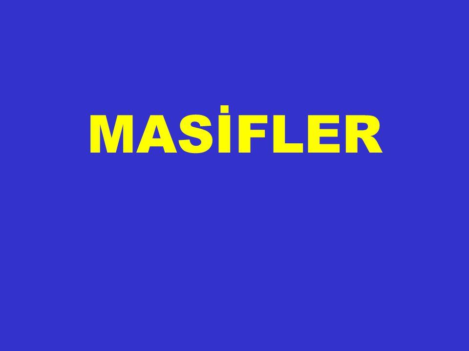 MASİFLER