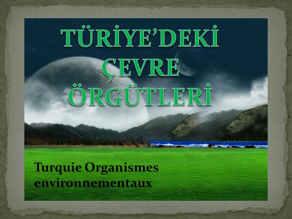 TÜRİYE'DEKİ ÇEVRE ÖRGÜTLERİ