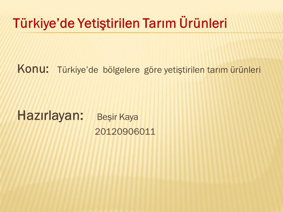 Türkiye'de Yetiştirilen Tarım Ürünleri