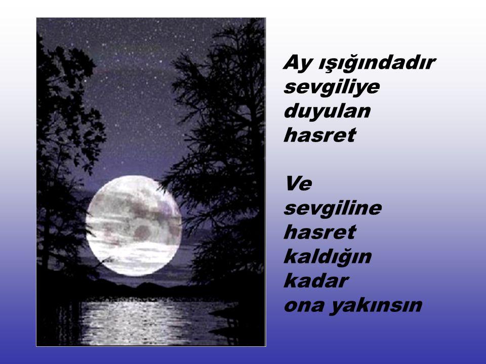 Ay ışığındadır sevgiliye duyulan hasret