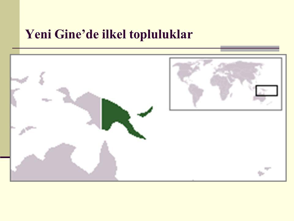 Yeni Gine'de ilkel topluluklar