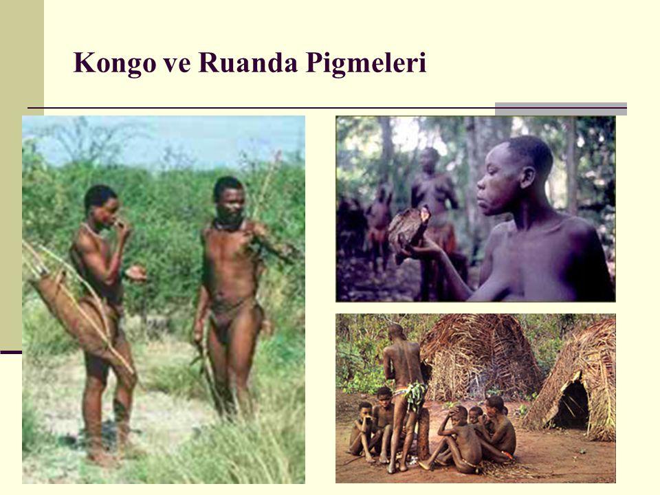 Kongo ve Ruanda Pigmeleri