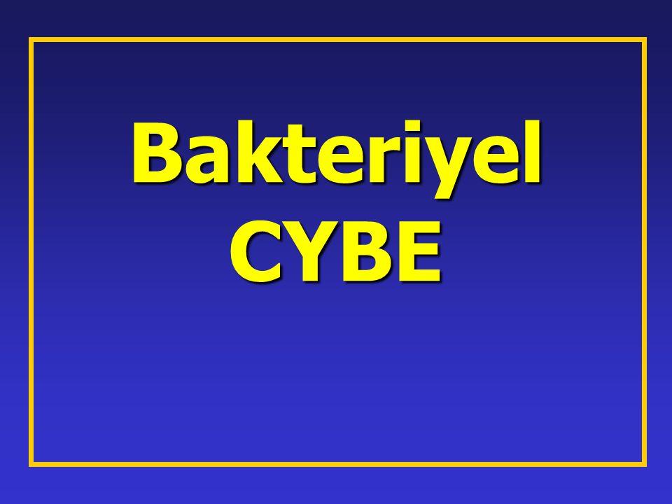 Bakteriyel CYBE