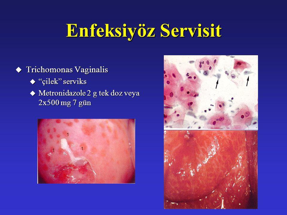 Enfeksiyöz Servisit Trichomonas Vaginalis çilek serviks