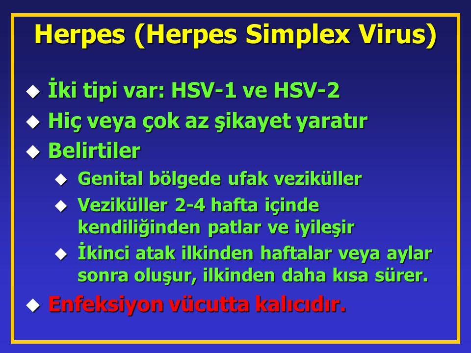 Herpes (Herpes Simplex Virus)