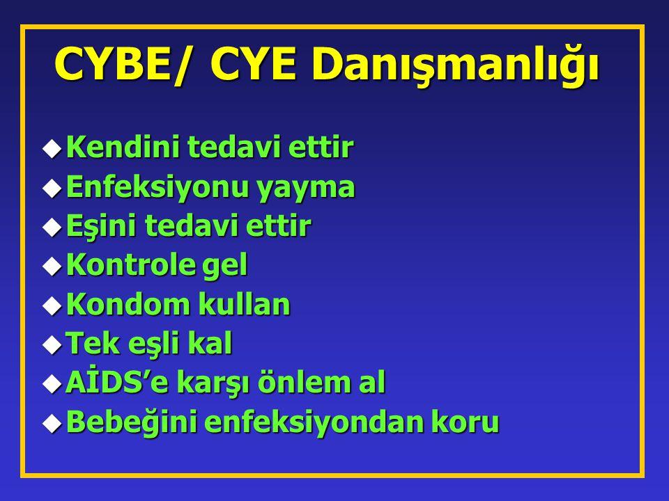 CYBE/ CYE Danışmanlığı