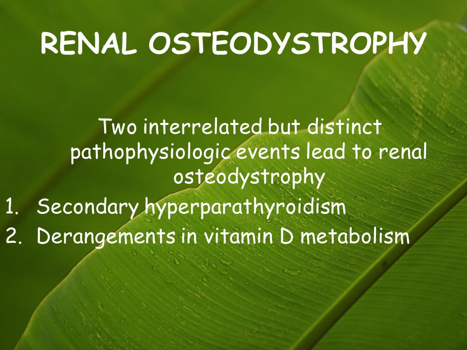 RENAL OSTEODYSTROPHY Two interrelated but distinct pathophysiologic events lead to renal osteodystrophy.