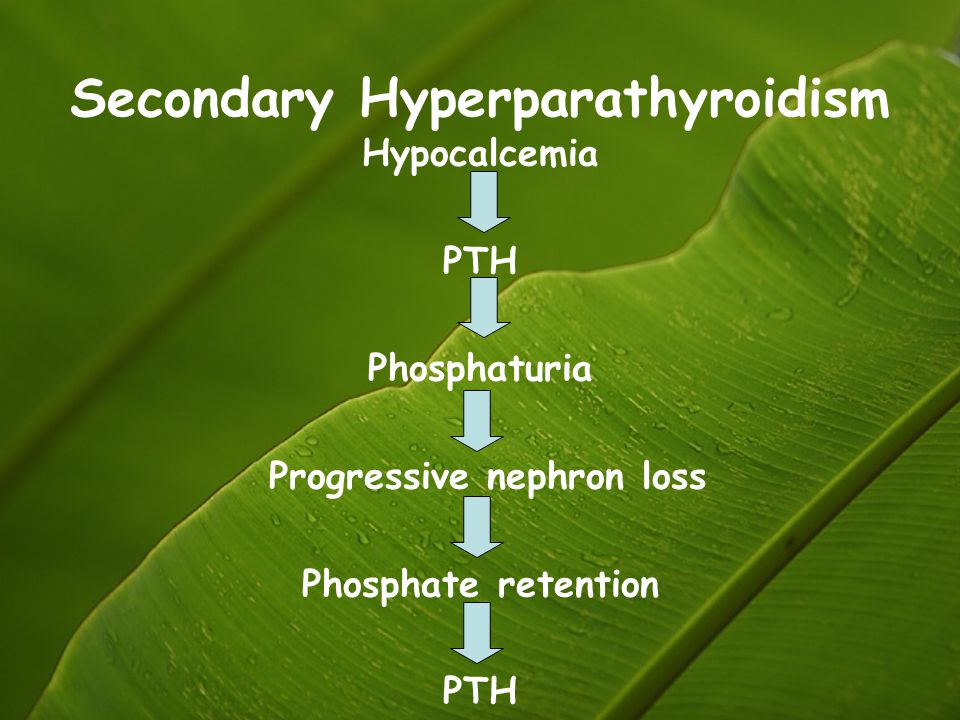 Secondary Hyperparathyroidism
