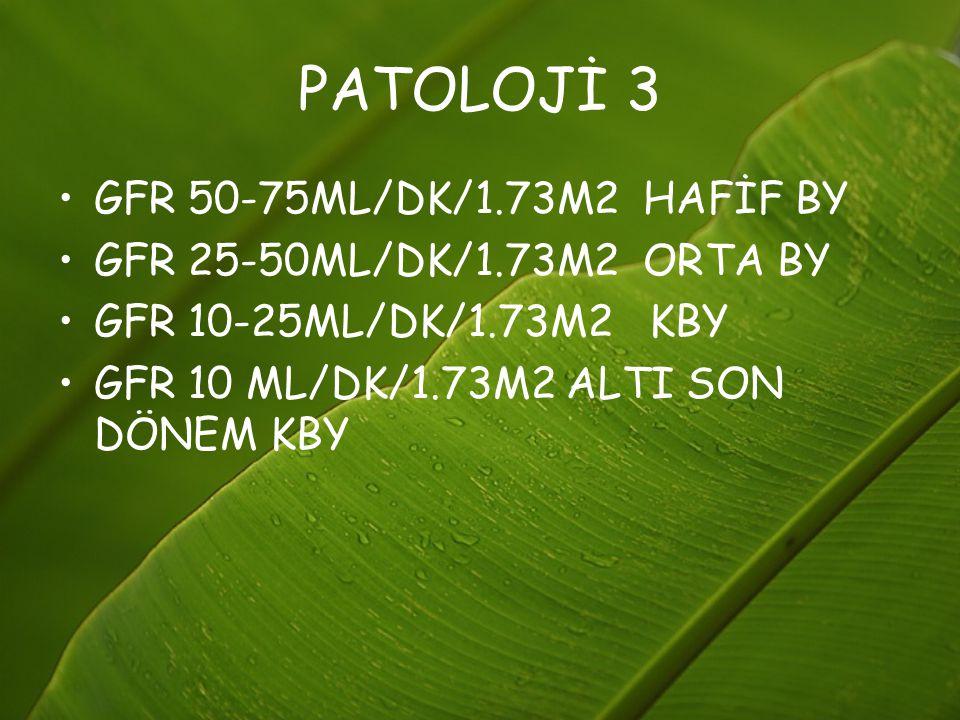 PATOLOJİ 3 GFR 50-75ML/DK/1.73M2 HAFİF BY