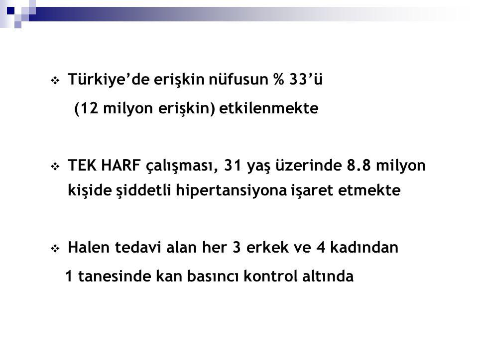 Türkiye'de erişkin nüfusun % 33'ü