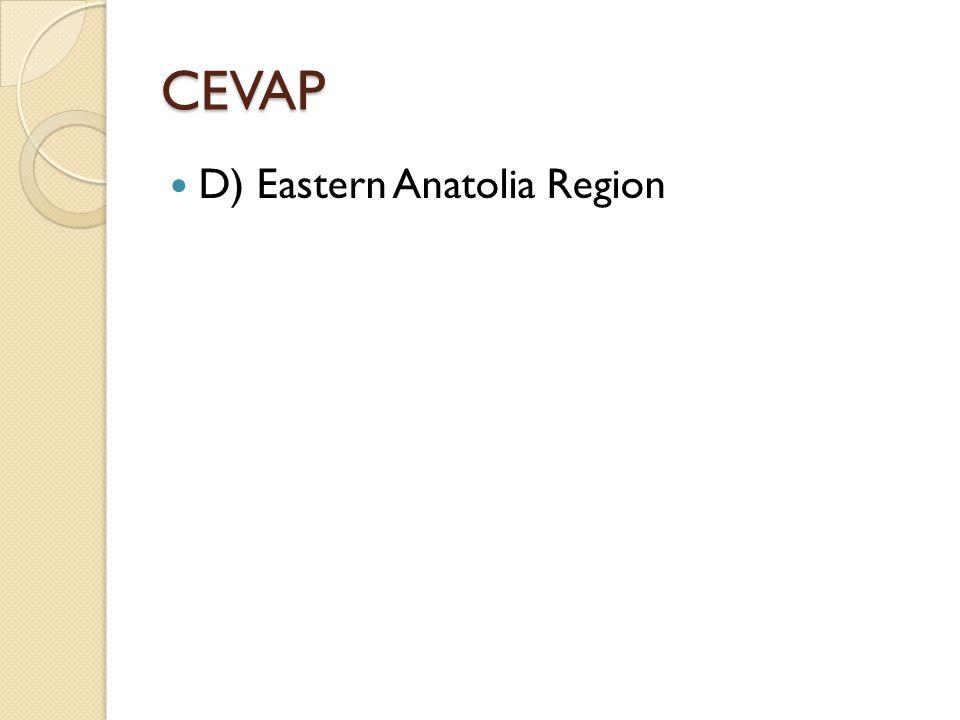 CEVAP D) Eastern Anatolia Region