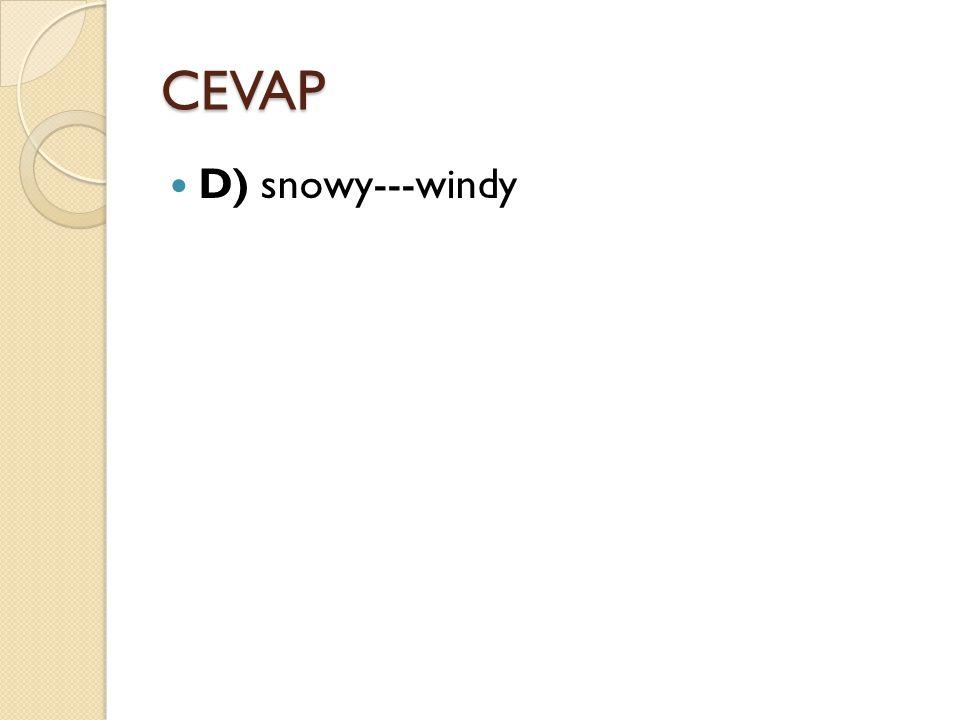CEVAP D) snowy---windy