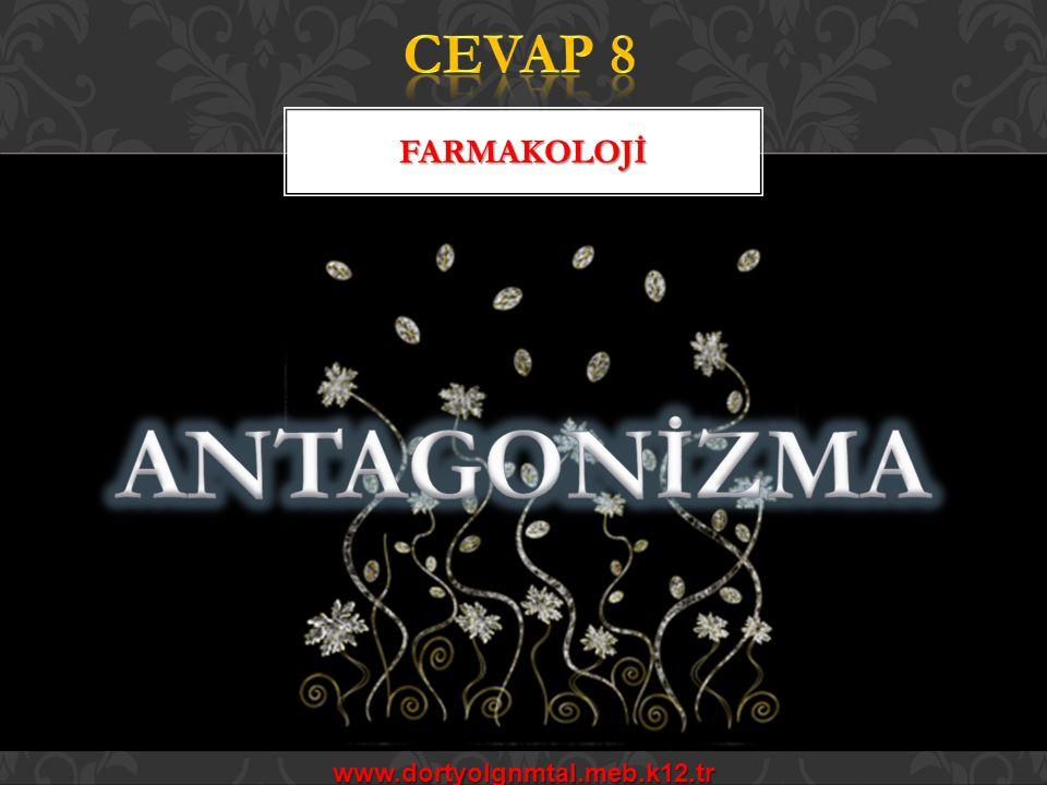CEVAP 8 FARMAKOLOJİ ANTAGONİZMA www.dortyolgnmtal.meb.k12.tr