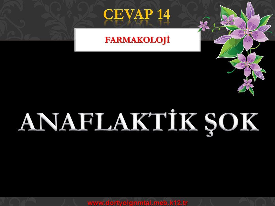 CEVAP 14 FARMAKOLOJİ ANAFLAKTİK ŞOK www.dortyolgnmtal.meb.k12.tr